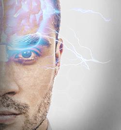 Neurociência Criminal e Comportamento Comunicativo